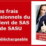 Modèle d'annexe comptable simplifiée pour une SAS ou une SASU